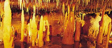 The Buchan Caves :- Limestone formations