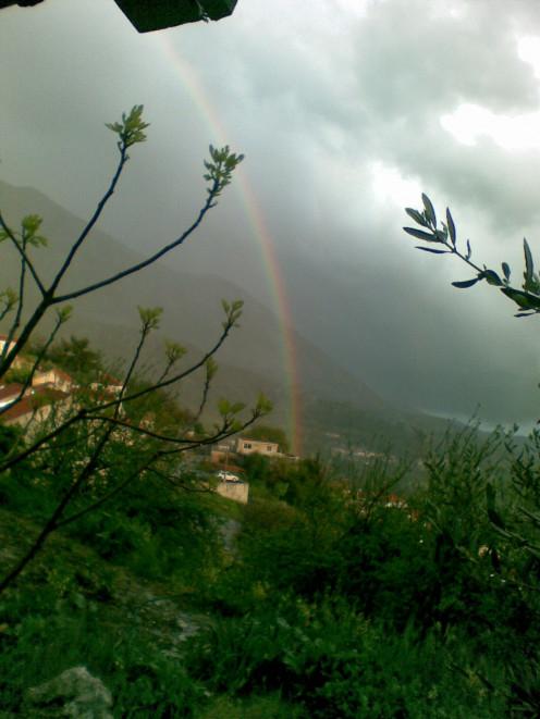 A rainbow as seen slightly after a rain