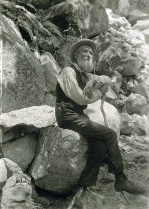 John Muir: leader of the preservation movement