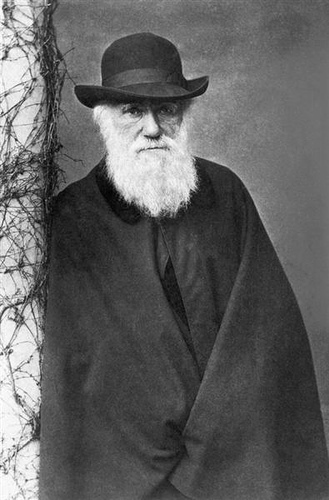 Charles Darwin from Claudio Toledo flickr.com
