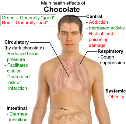 The main health effects of chocolate on the human body.
