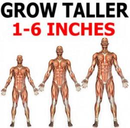 Ways to get taller fast