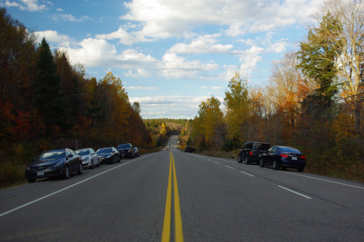 Highway 60 running through the park shows fall colours