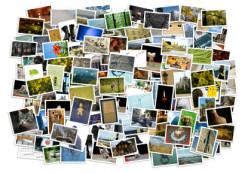 What do you do when you have enough photos to fill a landfill?