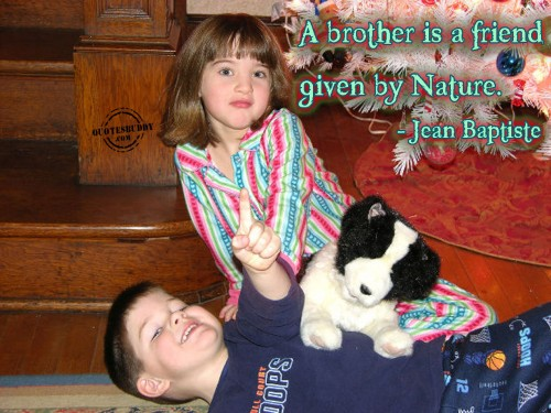 Brother And Sister Quotes And Sayings Wehavekids
