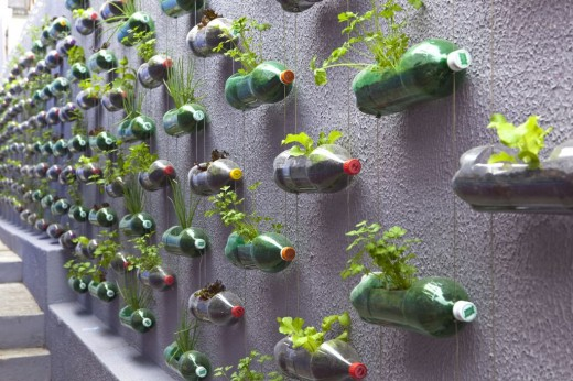up-cycled plastic bottles for a hanging garden