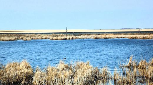 Saskatchewan's Grassland and Oasis