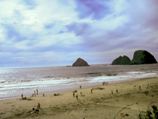 Beach-Oceanside, Oregon