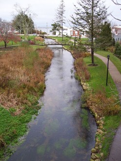 Th Town Brook and Brewster Gardens