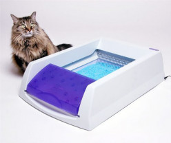 Top 5 Automatic Litter Boxes for Cats