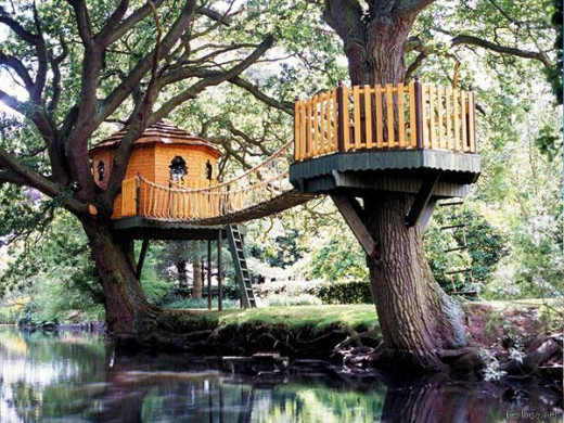 Got lots of woods? Build a tree house for your kids. Don't feed the termites.