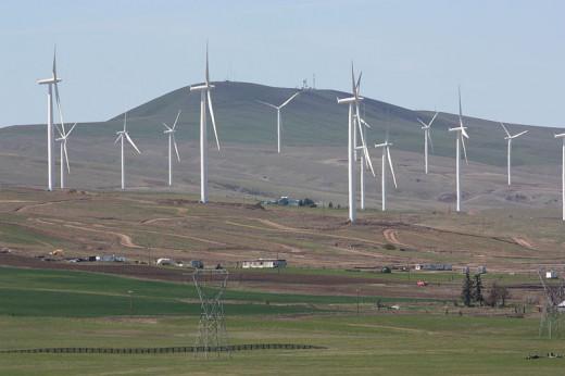 Wind Farm on Columbia Hills
