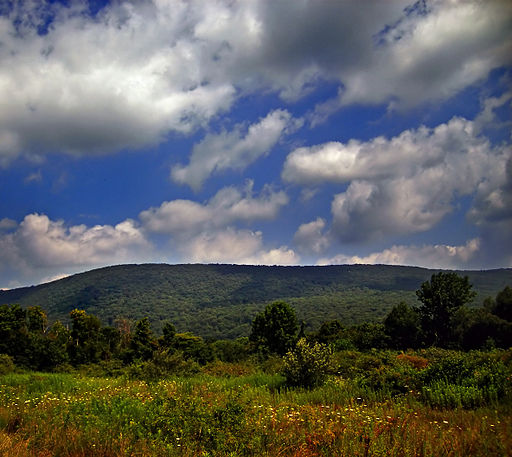 When the Appalachian Trail first enters New Jersey, it travels along the crest of Kittatinny Mountain.