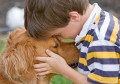Golden Retriever Names: Male, Female, & Gold Name Ideas