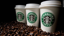 """Starbucks Top 5 Beverages For Fall & Why You Should Indulge"""
