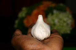 Garlic - Safe to Eat or Not ?