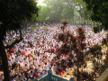 Eid ul Adha Festival: The Festival of Sacrifice