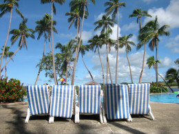 Deckchairs near the large family pool.