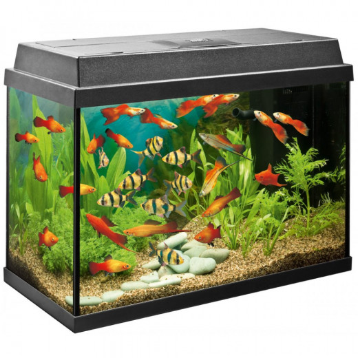 Using peroxide is a safe alternative for cleaning your fish tank