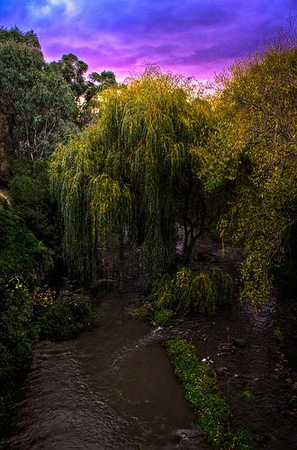 Merri Creek Sunset from Jarod Hawthorne flickr.com
