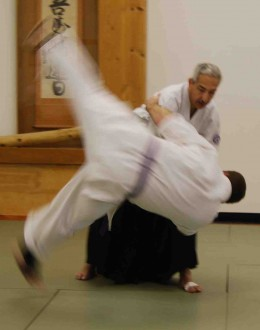 Aikido practitioners utilize ki energy to generate the power for Aikido Techniques.