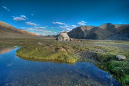 Trekking in Leh Ladakh