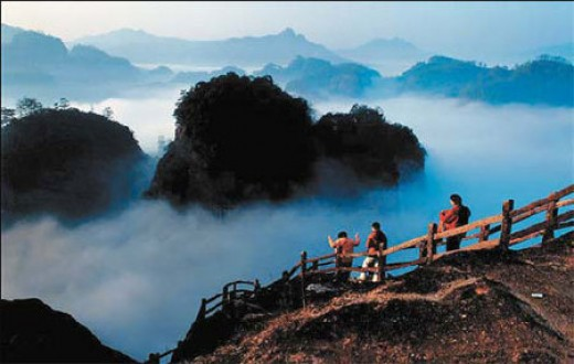 Travelers visit the Wuyi Mountains for spectacular natural scenery and fine oolong tea.
