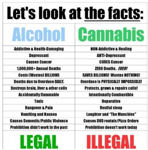 "Marijuana.com, . ""Marijuana Powered by Weedmaps."" The Real Pot-Wives of Marijuana County. Weedmaps Media Inc., 2012. Web. 18 Nov. 2013. ."