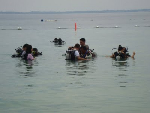 our first sea water diving experience