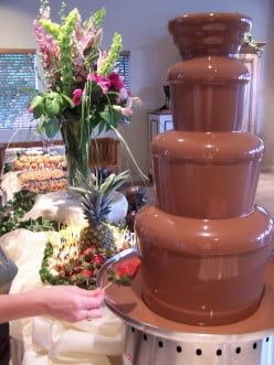 How sanitary do you feel a chocolate fountain is in restaurants?