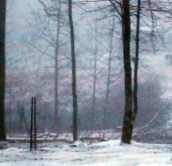 Plan For Winter Weather Emergencies