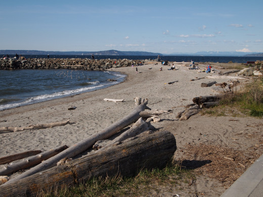 Brackett's Landing, Edmonds, WA - a very popular Northwestern dive site.