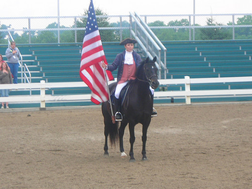 A Morgan horse with rider in colonial attire at the Kentucky Horse Park. Costuming intended to resemble Justin Morgan and Figure.