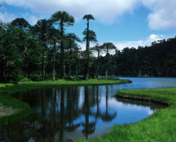 Huerquehue National Park - Chilean Lakes Patagonia