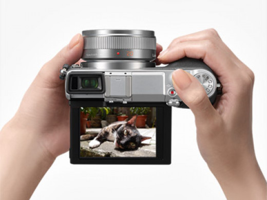 The Panasonic LUMIX GX7 is very affordable and has all of the qualities you will need in a compact camera.
