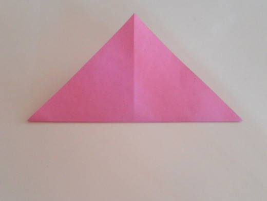 Align the bottom corner with the top corner and fold the paper to make a horizontal crease.