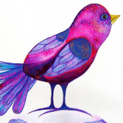 Priscilla Cruz profile image