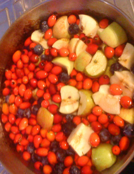 Put apples, rosehips, sloes and rowan berries in cooking pot.