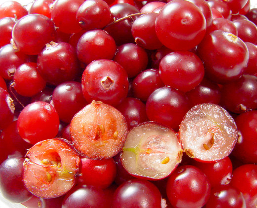 Cranberries are rich in antioxidants and vitamins and are very goof for you