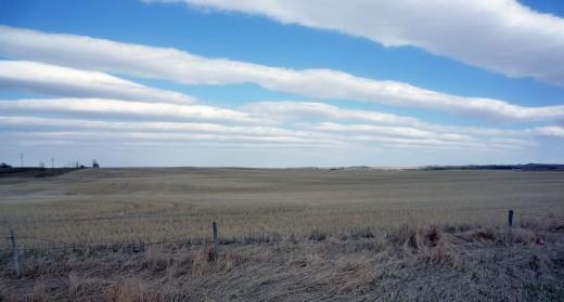 Calgary's Sky and Grassland