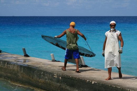 Men working on a pearl farm in French Indonesia