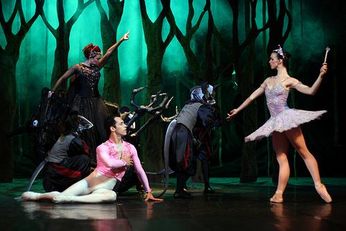 BALLET A BELA ADORMECIDA from Moises Unger flickr.com