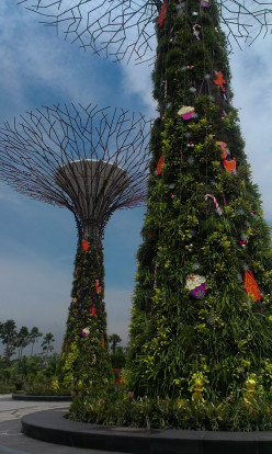 Visiting Singapore: Exploring Gardens by the Bay