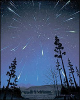 The Leonid meteor shower
