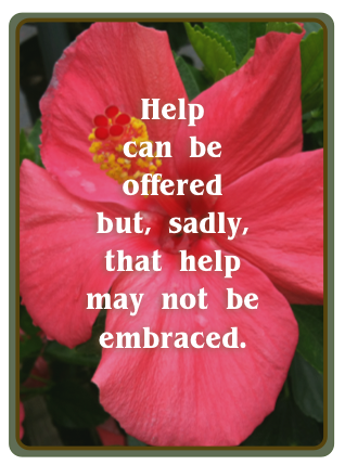 Defining help is important, but it can't be forced on an individual or a family.