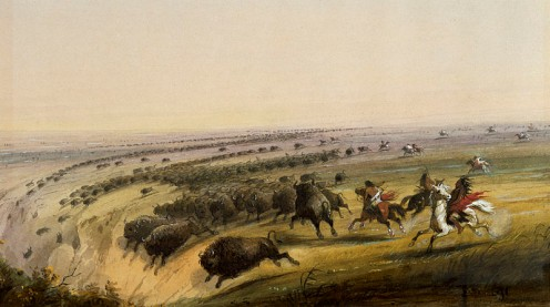 It is true that various Plains Indians would occasionally chase buffalo over a small cliff, but Miller probably never saw this scene and therefore exaggerated it a bit. The Indians, when they found a suitable bluff, would conceal themselves behind th