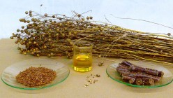 Important Information about Flaxseed Oil 1000MG Softgels
