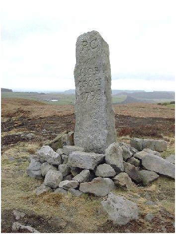 Hob Cross on the high moor above Commondale - come and watch kestrels hover, hunting for small creatures in the undergrowth and amongst the heather