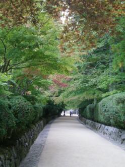 Autumn colours Koya-san © A Harrison