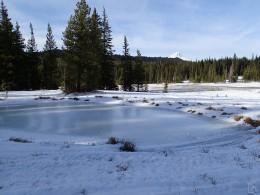 Frozen Meadow Pond
